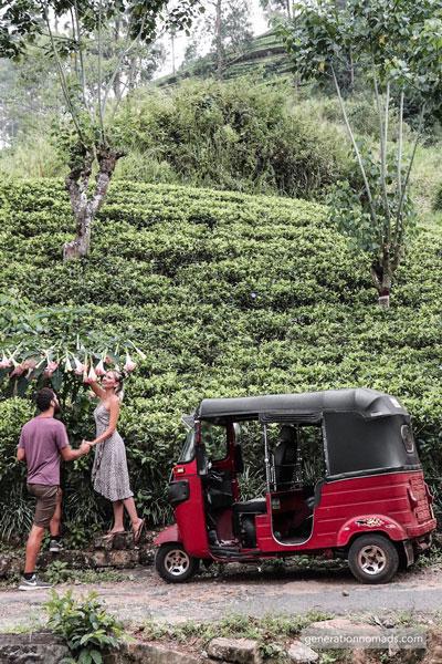 Tuk tuk Sri Lanka - Exploring tea plantations with our Tuktuk